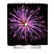 Flowerworks #36 Shower Curtain