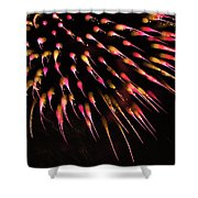 Flowerworks #39 Shower Curtain