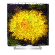 Flowery Acceptance In Abstract Shower Curtain
