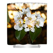 Flowery Sunset Shower Curtain