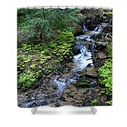 Flowing Creek Shower Curtain