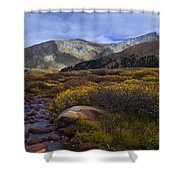 Flowing From Bierstadt Shower Curtain by Barbara Schultheis