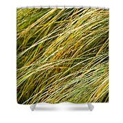 Flowing Green Grass  Abstract Shower Curtain