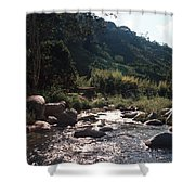 Flowing Nature Shower Curtain
