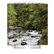 Flowing Through The Trees Shower Curtain