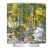 Fluctuations Shower Curtain