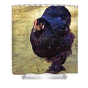 Fluffy Chicken Shower Curtain