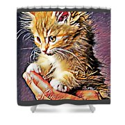 Fluffy Orange Kitten Shower Curtain
