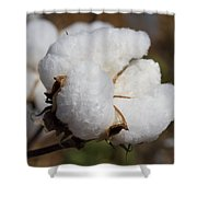 Fluffy White Alabama Cotton Shower Curtain