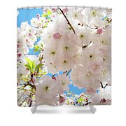 Fluffy White Pink Sunlit Tree Blossom Art Print Canvas Baslee Troutman Shower Curtain