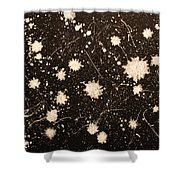 Flurries Shower Curtain