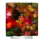 Flury Shower Curtain