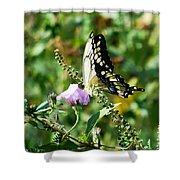 Flutter By 102110 Shower Curtain