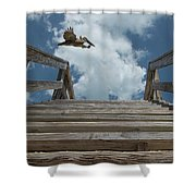 Fly By At The Beach - Brown Pelican And Rustic Stairs Shower Curtain