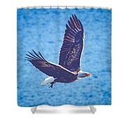 Fly By Eagle. 2 Of 3 Shower Curtain