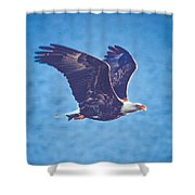 Fly By Eagle. 3 Of 3 Shower Curtain