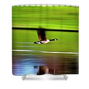 Fly-by Shower Curtain