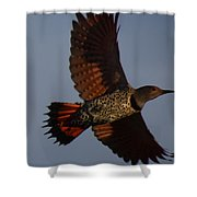 Fly Flicker Fly Shower Curtain