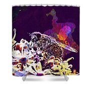 Fly Housefly Insect Close Macro  Shower Curtain