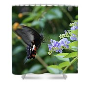 Fly In Butterfly Shower Curtain
