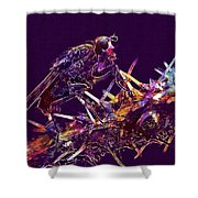 Fly Insect Nature Macro Close  Shower Curtain