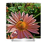 Fly On Flower Shower Curtain