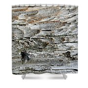 Fly On Wood Shower Curtain