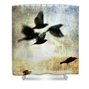 Fly With The Mood Shower Curtain
