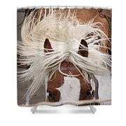 Flyin Bronc Shower Curtain
