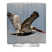 Flying Art Shower Curtain
