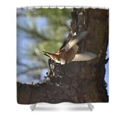 Flying Away Shower Curtain