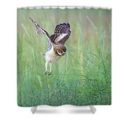 Flying Baby Burrowing Owl Shower Curtain