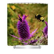 Flying Bee 2 Shower Curtain