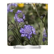 Flying Bee 2. Shower Curtain