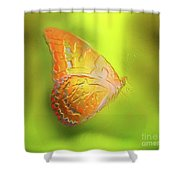 Flying Butterfly On Decorative Background, Graphic Design. Shower Curtain