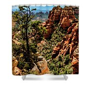 Flying Buttress 04-091 Shower Curtain