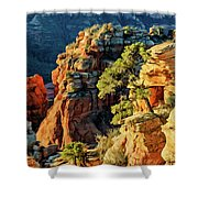 Flying Buttress 06-045 Shower Curtain