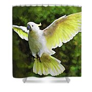 Flying Cockatoo  Shower Curtain
