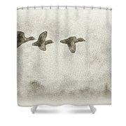 Flying Ducks Shower Curtain