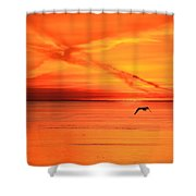 Flying East 2  Shower Curtain