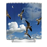 Flying High In The Clouds Shower Curtain