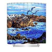 Flying High Over California Shower Curtain