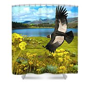 Flying His Kingdom Shower Curtain