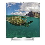 Flying Honu Shower Curtain