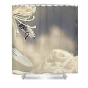 Flying In Infrared Shower Curtain