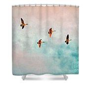 Flying Last Light Shower Curtain