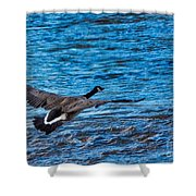 Flying Over Rough Waters Shower Curtain