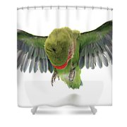 Flying Parrot  Shower Curtain