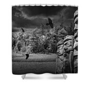Flying Ravens And Totem Poles In Black And White Shower Curtain