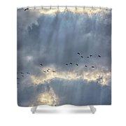 Flying Through Sun Rays 3 Shower Curtain